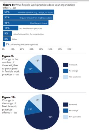pie charts illustrating remote work statistics